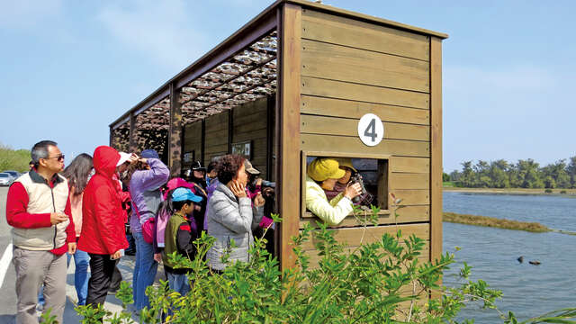 Bird watching at the bird-watching pavilion